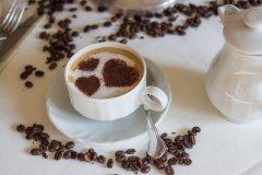 全球咖啡市场规模现状分