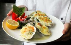 学西餐学费多少钱?在上海学西餐哪里好?